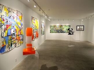 A New Surface, installation view