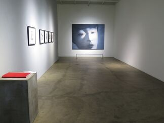 Side by Side, installation view