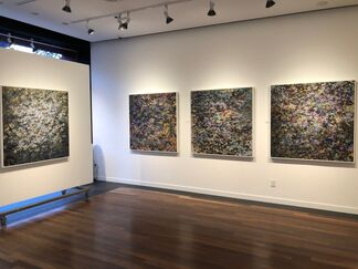 Steve Baylis: Contemplated Realities, installation view