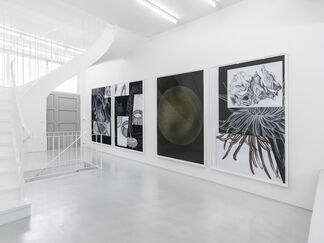 COSMIC CONFUSION, installation view