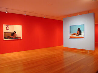 New Flower   Images of the Reclining Venus, installation view