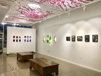 Just Visiting: LA, installation view
