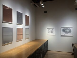 Mungo Thomson & Do Ho Suh, installation view