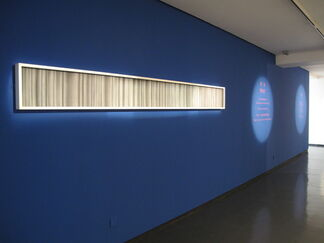 WHAT - Chen Wenji's New Works 2011, installation view