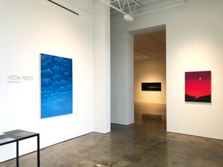 VEDA REED | transition, installation view