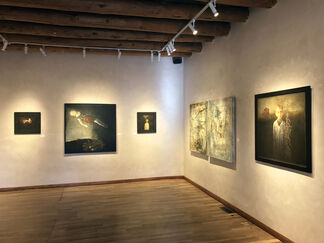 Expansion, installation view