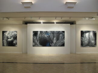 Embracing the Sublime, installation view