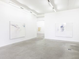 Thilo Heinzmann: When a mule runs away with the World, installation view