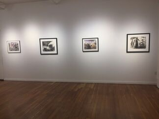Red Trees and Walking Mountains, an exhibition of new paintings by Douglas Anderson, installation view