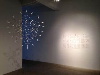 Synthetic BioStructure, installation view