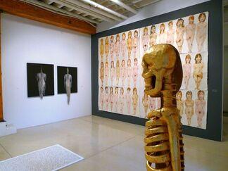 Anthropos, installation view