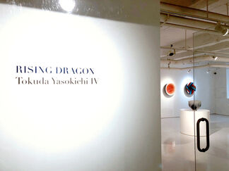 Rising Dragon: Tokuda Yasokichi IV, installation view