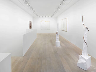 Giuseppe Penone: Selected Works, installation view