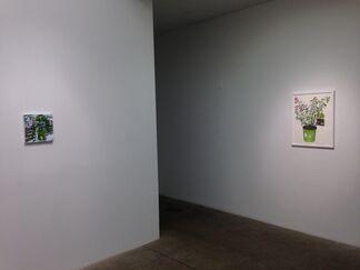 Bloomfield, installation view