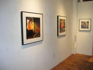 Tom Chambers: Illumination & Animal Visions, installation view