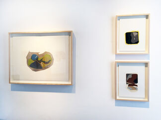 The Curve of Forgetting, installation view