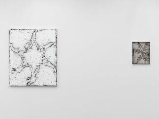 Snowflake, installation view