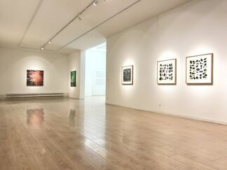 An Overlapped and Rotative Identity, installation view