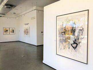 Interior Landscapes, installation view