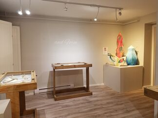 A RHAPSODY IN COLOR & FORM, installation view
