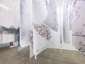 """Petra Cortright, """"borderline aurora borealis"""", installation view"""
