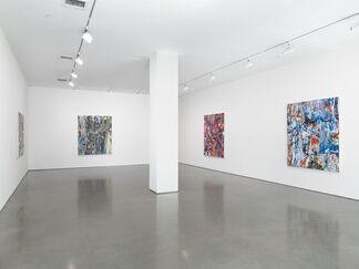 Michael Reafsnyder, installation view