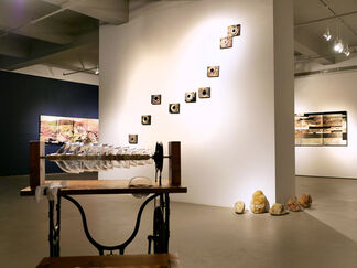 Yulia Pinkusevich: The Recollections of Stones Unturned, installation view