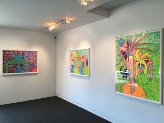 Small Invasions, installation view