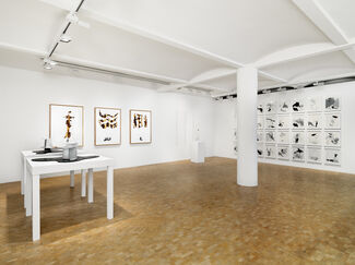 From a distance, installation view