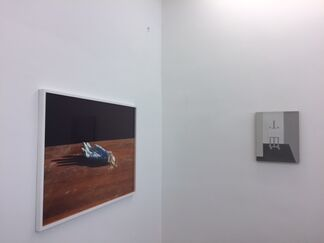 Chinese Spring #3, installation view