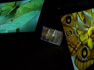 Kutluğ Ataman: Stefan's Room, installation view