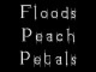 """Spring Floods and Peach Petals"" 春季的洪水与桃花瓣, installation view"