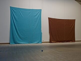 Polly Apfelbaum: Colour Sessions, installation view