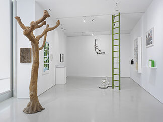 Something about a Tree, installation view