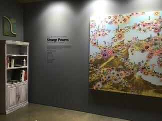 Strange Powers, installation view