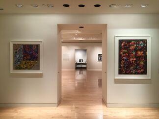 Abelardo Morell: Flowers for Lisa, installation view