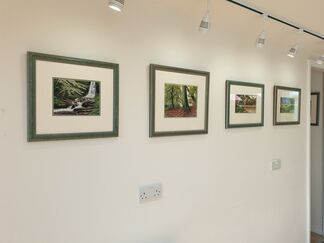 Forests in Stitch, installation view
