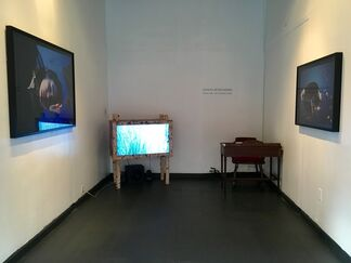 What Are You Fishing For?, installation view
