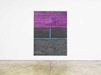 Juan Uslé: Membrana Porosa, installation view