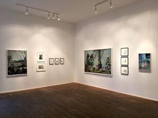 Wolf Hamm, installation view