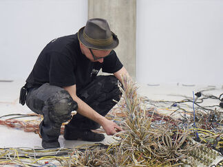 Krištof Kintera | Postnaturalia, installation view