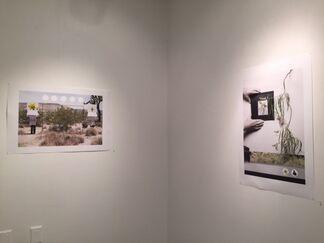 """JTHAR  """"WANDER / INVENT"""", installation view"""