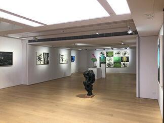 Ineffable Garden — Zhang Jian-Jun and Barbara Edelstein, installation view