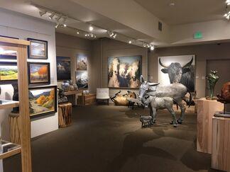 """Rural Narratives"" - Stephanie Hartshorn and Tamara Rymer, installation view"