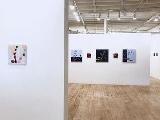 Kathy Cantwell: Walking The Line, installation view