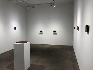 Ann Shostrom / The Rising | Alex Stolyarov / Passions, installation view