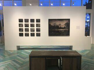 Wild America | Process & Preservation, installation view