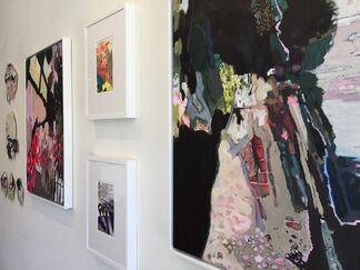 Anything You Can Do, installation view