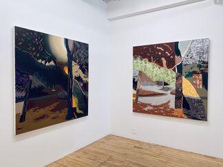 Christopher Schade: Envisaged Landscapes, installation view