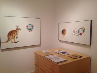 Kevin Earl Taylor: LUX, installation view